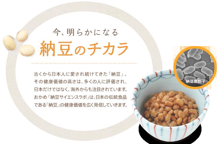 オカメ 納豆